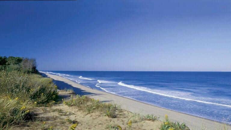 Coast Guard Beach on Cape Cod.