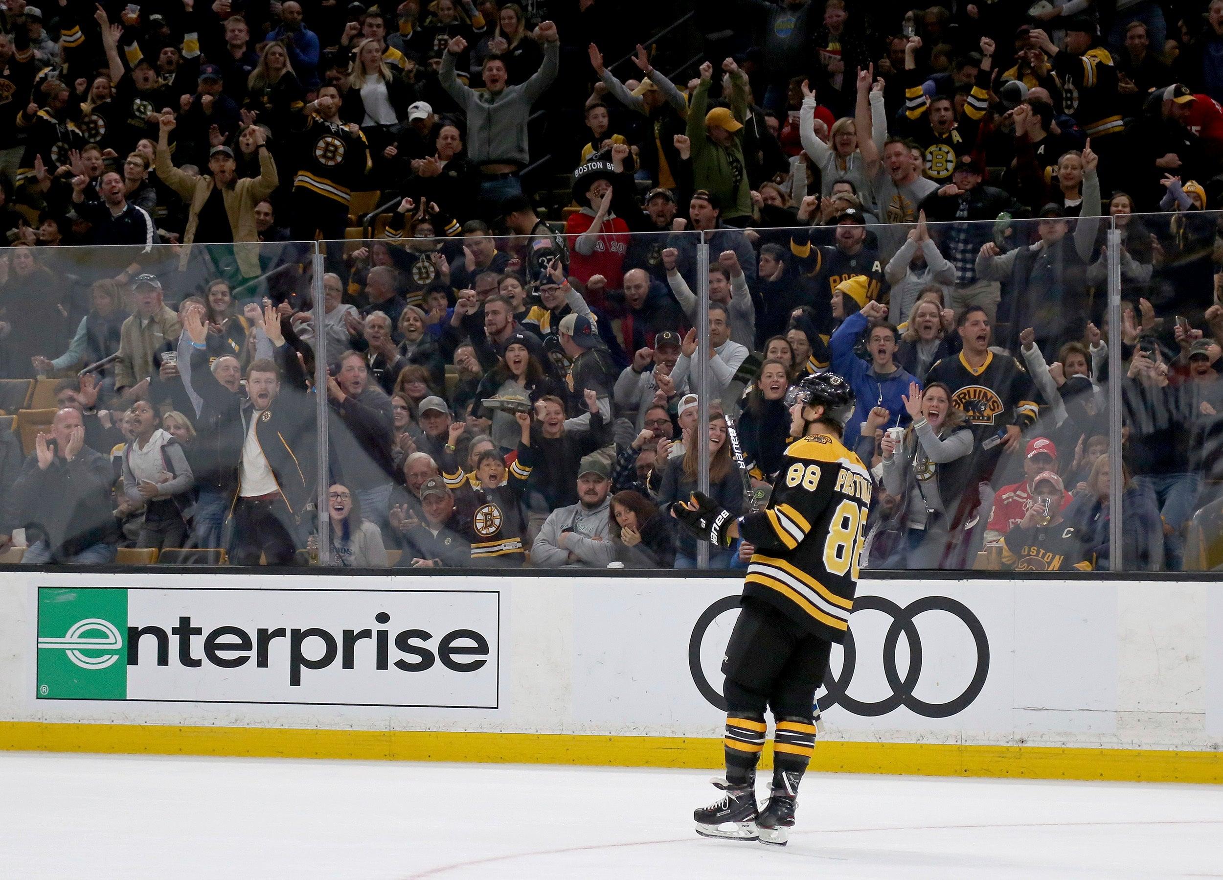 David Pastrnak Boston Bruins NHL