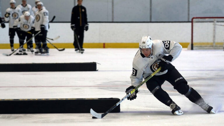 Boston Bruins Jack Studnicka