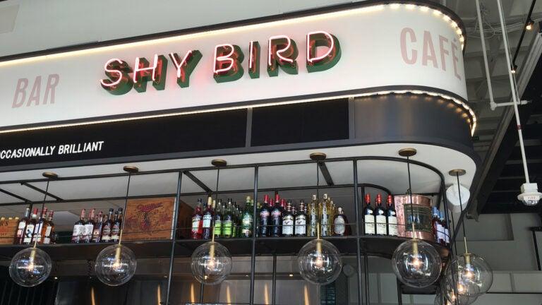 Shy Bird sign