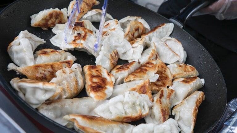 Cambridge Dumpling Festival