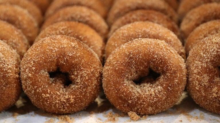 Apple cider donuts at Wilson Farm in Lexington