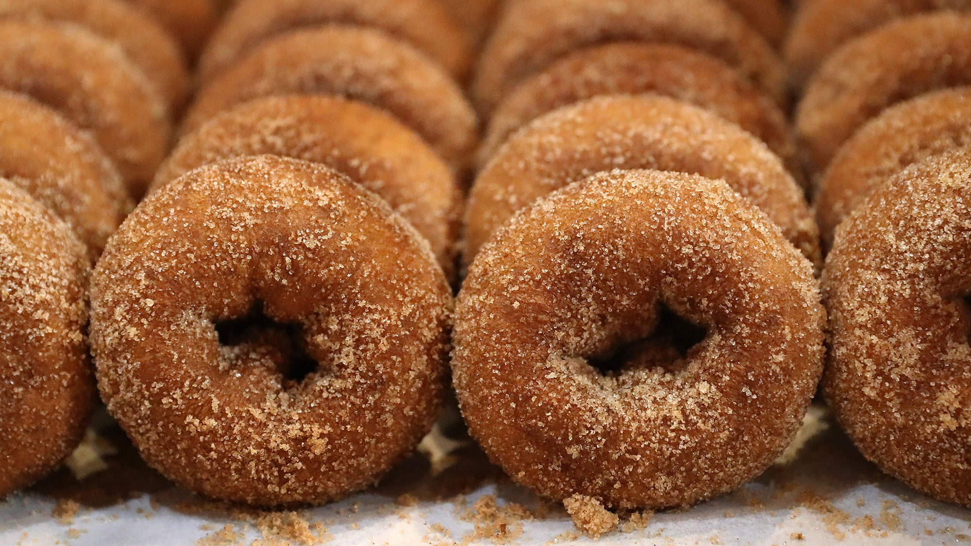 Apple cider donuts at Wilson Farm in Lexington