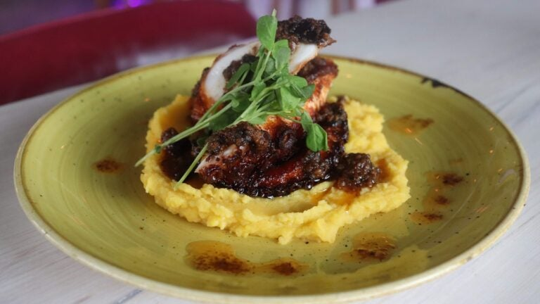 El Ocho octopus tentacle on gold potato purée, drizzled with sauce