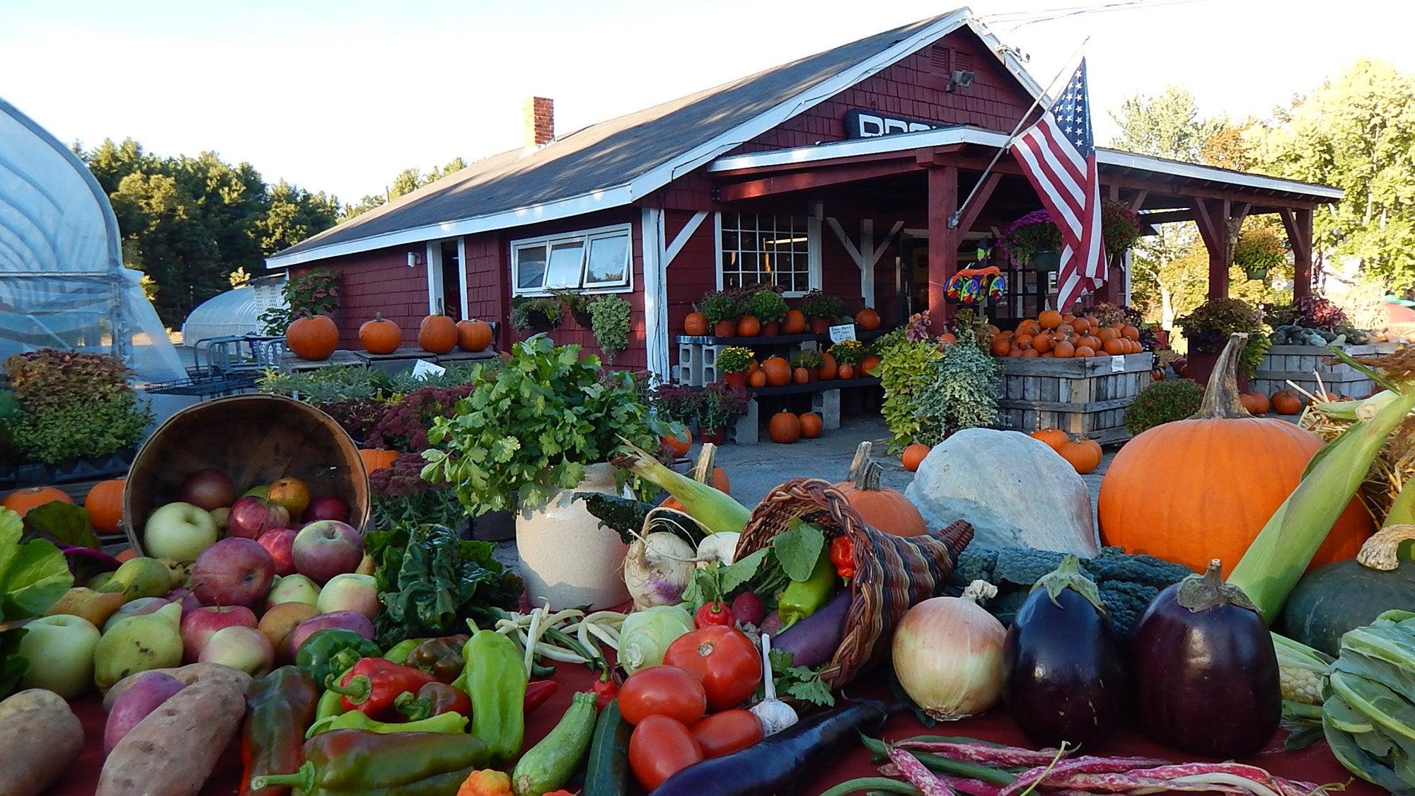 Produce at a Farmer Dave's farm stand.
