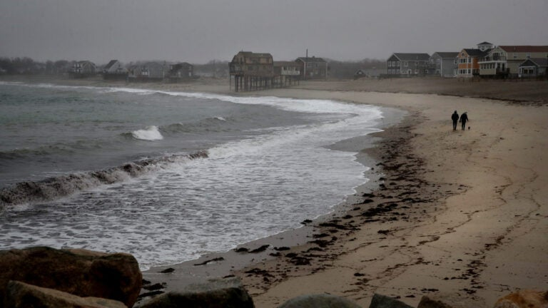 A couple walk a dog on Peggotty Beach in Scituate.