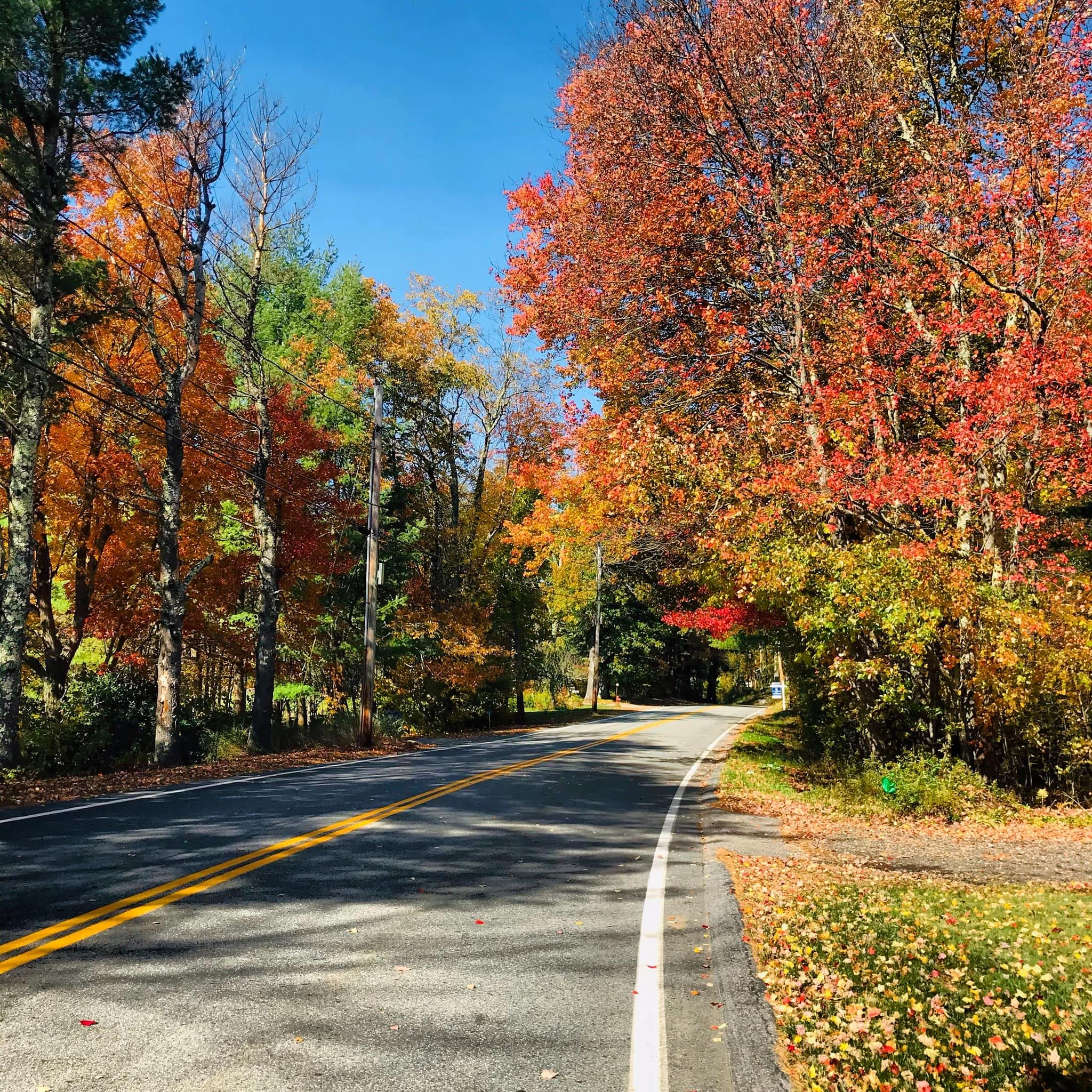 We asked for the best fall foliage photos.  Here are your favorites.